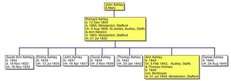 Staffordshire Birth Records 20c Diary