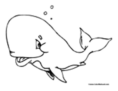 humongous whale coloring page whale coloring pages