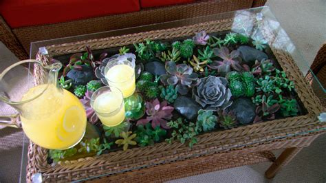 Terrarium Coffee Table Learn Do How To Make A Terrarium Coffee Table Martha Stewart