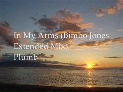 Plumb In Arms Remix by In Arms Bimbo Jones Extended Remix Plumb