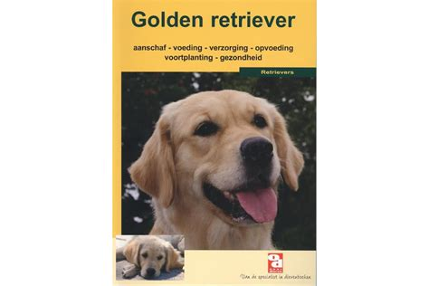 golden retriever shop golden retriever shop golden retriever shop dieren boekenserie golden