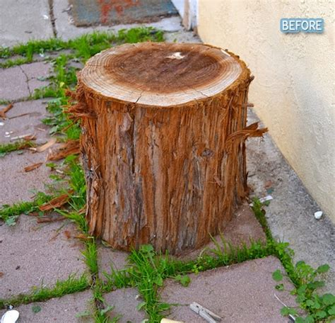 Tree Stump Patio by Pin Tree Stump Home By Oli Pop On
