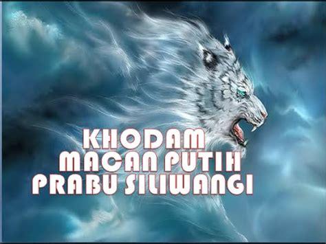 harimau putih prabu siliwangi kisah khodam macan putih prabu siliwangi