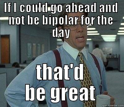 Bipolar Meme - 20 funny memes to lighten up your bipolar friend