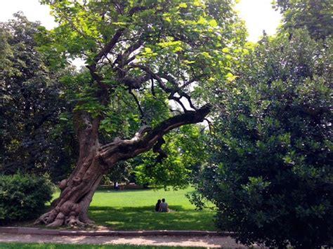 giardini di marzo significato parchi a gli imperdibili 4