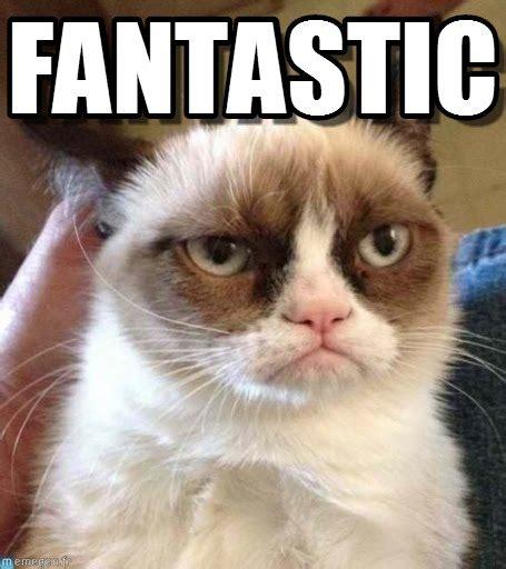 Fantastic Meme - fantastic grumpy cat reverse meme on memegen