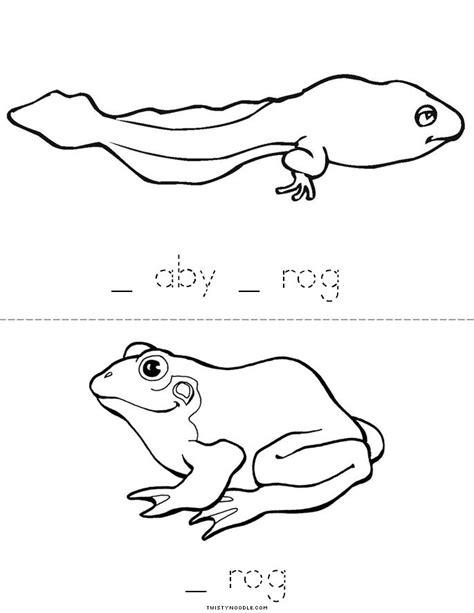 frog life cycle book twisty noodle