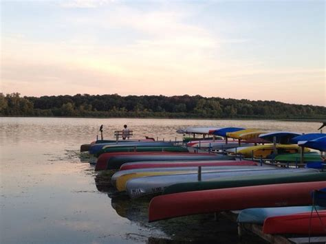 paddle boat rental lincoln park zoo 30 best madison to do images on pinterest arcade games
