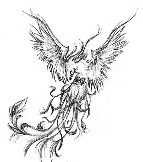 black phoenix tattoo designs grey and black design