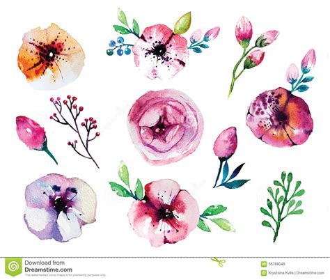 Set Flower vector watercolor floral set stock vector