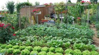 conseils en jardinage astuces et tutoriels pour le jardin