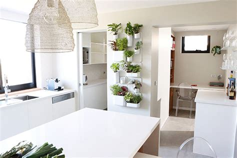 kitchen herb garden interior designs home indoor kitchen herb gardens just in time for spring