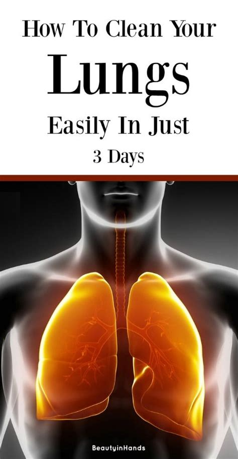 How To Purge Chronic Infections Detox by How To Clean Your Lungs Easily In Just 3 Days Quot A Z