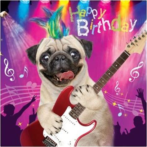 pug singing happy birthday top 25 best happy birthday ideas on birthday wishes for