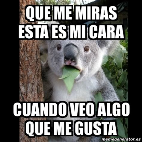 Meme Generator Koala - meme koala que me miras esta es mi cara cuando veo algo