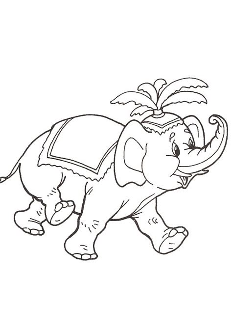 coloring pages indian elephant coloring page elephant india coloring me
