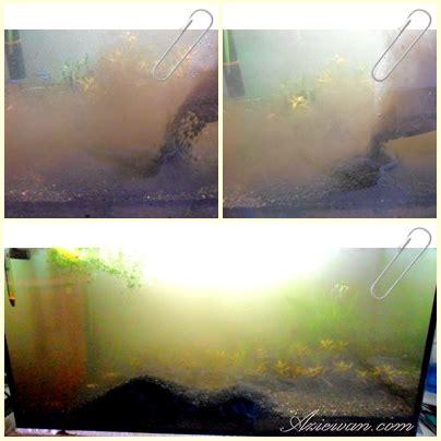 Cermin Aquarium cara menambahkan amazonia sand dalam planted tank