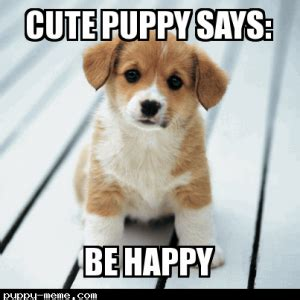 Cute Puppies Meme - 1408791227139
