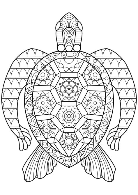 coloring pages turtles zen turtle turtles coloring pages