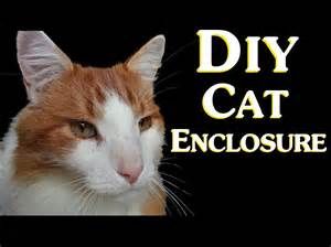 Inexpensive House Plans To Build diy cat enclosure how to save money by making a cheap do