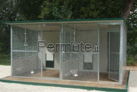 gabbie per gatti da esterno cucce gabbie e box per cani e per gatti ancona usato in