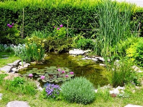 bassin jardin 2509 les bassins de jardin