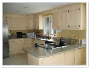 ideas for kitchen cabinet colors kitchen cabinet color ideas rooms
