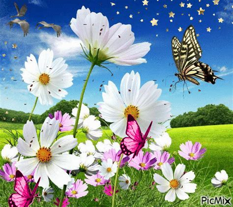 imagenes de vomitando mariposas paisaje mariposas picmix