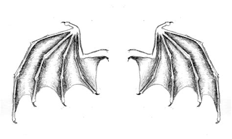 bat wing tattoo collection of 25 bat wing design