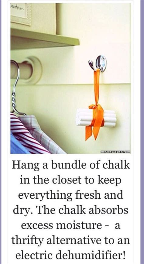 What To Put In Closet To Smell 17 best images about odor eaters on so fresh