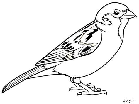 Dessin Gratuit Un Moineau Dory Fr Coloriages S Coloriage Oiseau Facile L