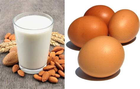 proteina y 20 alimentos ricos en prote 237 nas y bajos en grasa para