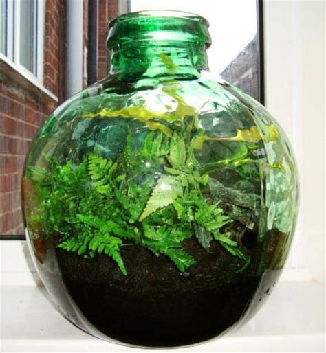 sealed bottle garden ideas for reusing glass bottles and jars