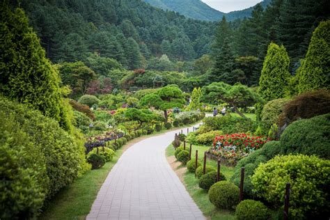 of the morning garden of the morning calm gapyeong gun south korea