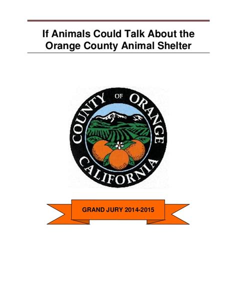 orange county pound if animals could talk about the orange county animal shelter