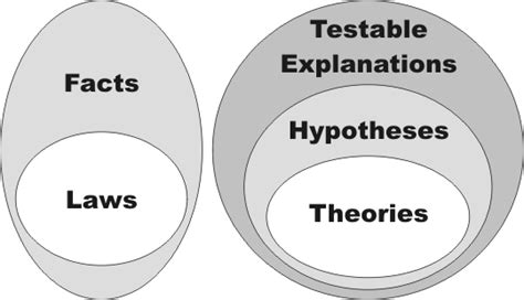 venn diagram of hypothesis and theory theory or practice catherinesweet s