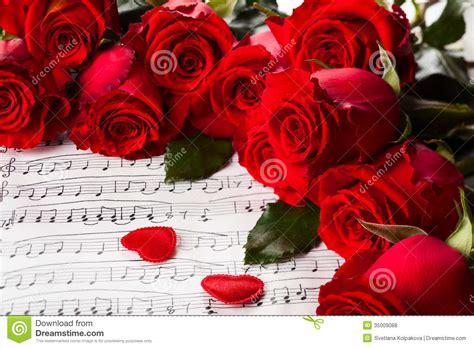 imagenes de rosas musicales rosas rojas foto de archivo imagen de horizontal d 237 a