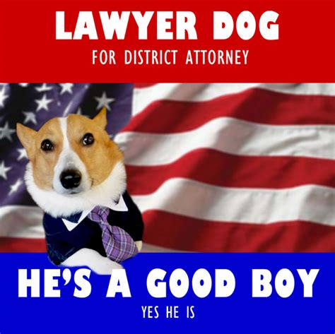 Lawyer Dog Meme - image 287421 lawyer dog know your meme