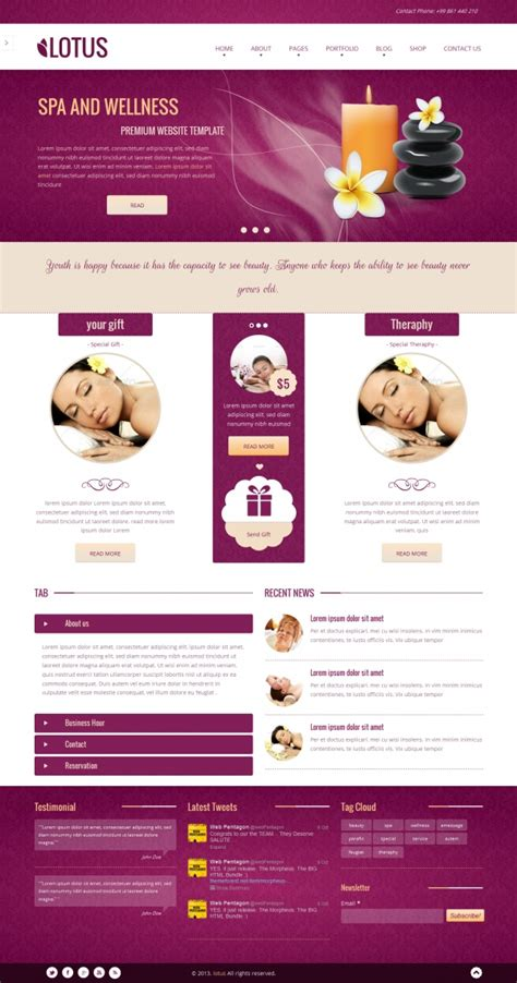 10 spa wordpress themes 2014 gotowpthemes
