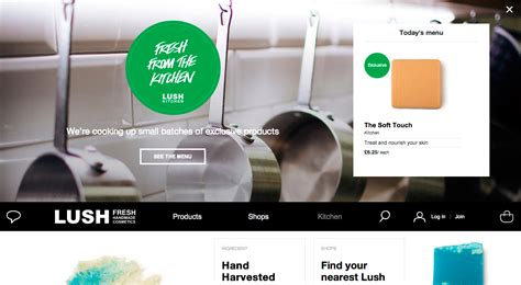 Lush Handmade Cosmetics India - lush cosmetics site of the day april 25 2014