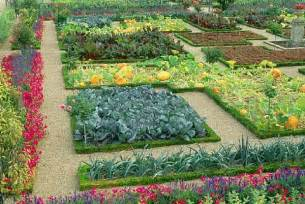 potager style vegetables flowers and herbs intermingled