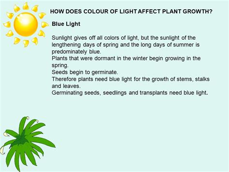 does the color of light affect plant growth plants and light ppt