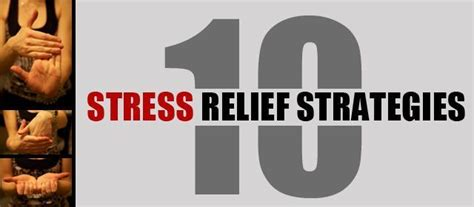 64 Best Images About Management On Stress by 26 Best Images About Stress Less For Success On