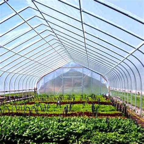 greenhouses  sale ontario cold frame
