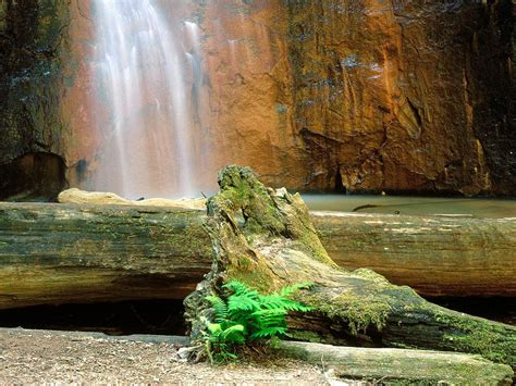waterfall wallpaper for walls waterfall hd wallpapers full hd wall pictures
