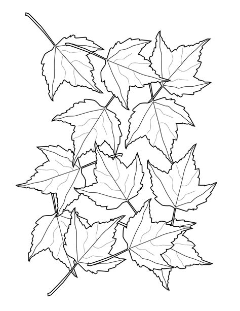 fall coloring sheets 5 fall coloring sheets autumn season coloring pages all esl