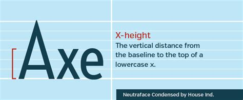 typography x height how to speak typography terms you should creative market
