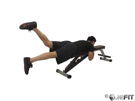 reverse hyper bench one leg reverse hyper on flat bench exercise database
