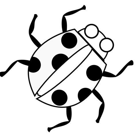 ladybug coloring page free free printable ladybug coloring pages for kids
