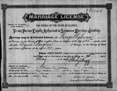 Chicago Marriage License Records Pergler Family History Anezka Anazka Agnes Pergler Materna 1878 1944